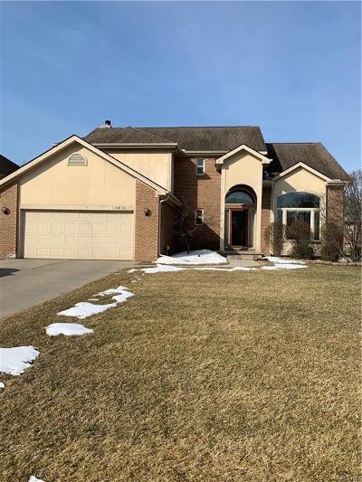 Southfield Single Family Home For Sale: 28411 Idensbrook Crt