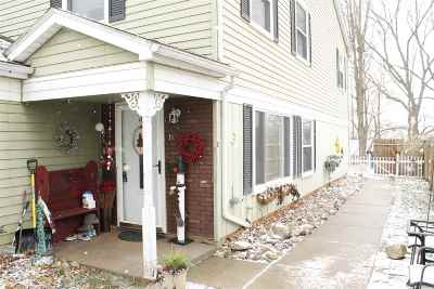 Lenawee County Condo/Townhouse For Sale: 317 Clark