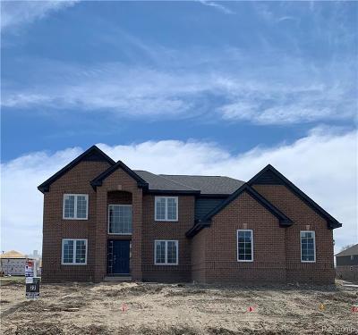 South Lyon Single Family Home For Sale: 24381 Pembrooke Dr