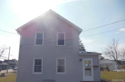 Lenawee County Single Family Home For Sale: 1044 E Butler St
