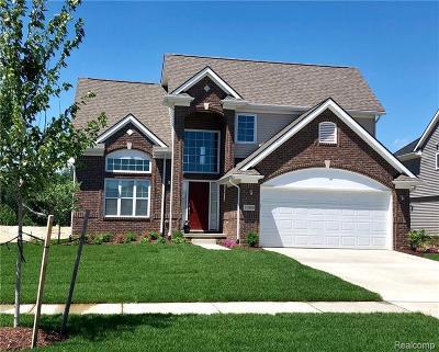 South Lyon Single Family Home For Sale: 55582 Worlington Ln