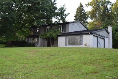 West Bloomfield Single Family Home For Sale: 4223 Fieldbrook Rd