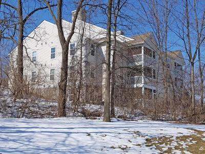Ann Arbor Condo/Townhouse Contingent - Financing: 1089 Joyce Ln