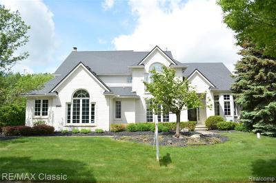 Novi Single Family Home For Sale: 25699 Cody Ln