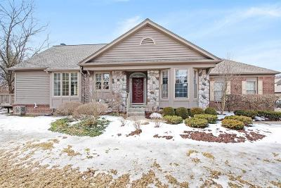 Washtenaw County Condo/Townhouse Contingent - Financing: 1951 Boulder Dr