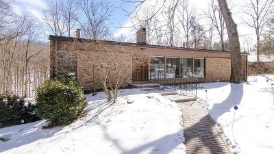 Ann Arbor Single Family Home For Sale: 3496 Daleview Dr