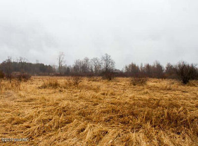 Hillsdale MI Residential Lots & Land For Sale: $89,900