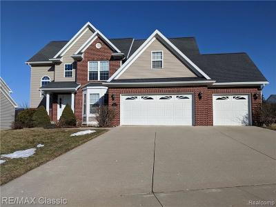 Williamston Single Family Home For Sale: 1117 Cobblestone Crt