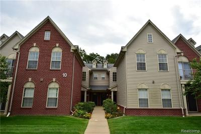 Ann Arbor Condo/Townhouse For Sale: 1007 Addington Ln