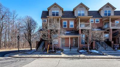 Ann Arbor Condo/Townhouse For Sale: 3082 Barclay Way