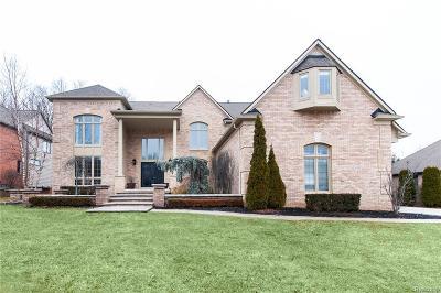 Novi Single Family Home For Sale: 47330 Baker St