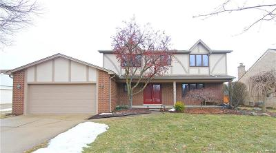 West Bloomfield Single Family Home For Sale: 6059 Kiev St