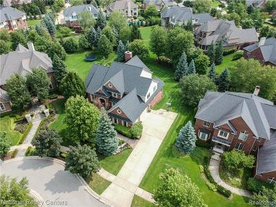 Northville Single Family Home For Sale: 18124 Peninsula Way