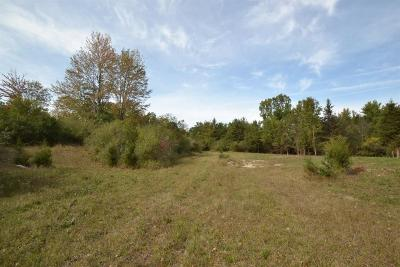 Ann Arbor MI Residential Lots & Land For Sale: $225,000