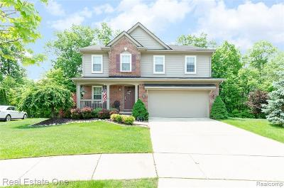 Canton Single Family Home For Sale: 46705 Woodside Dr