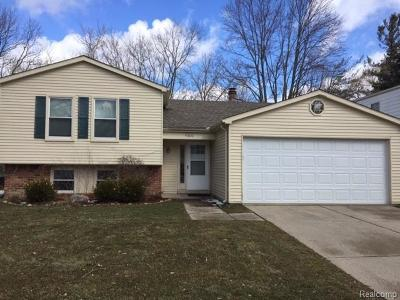 Novi Single Family Home For Sale: 41836 Cherry Hill Rd