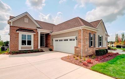 Northville Condo/Townhouse For Sale: 17098 Garden Ridge Ln