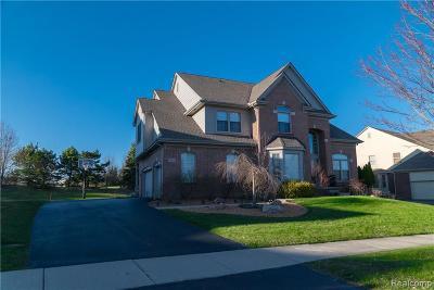 Novi Single Family Home For Sale: 30235 Pennington Crt