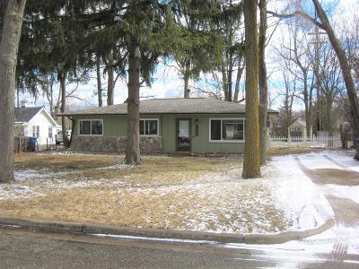 Ann Arbor Single Family Home For Sale: 2905 Fernwood Ave