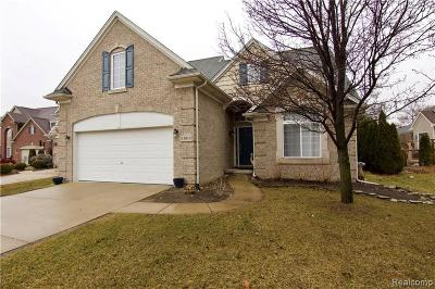 Livonia Single Family Home For Sale: 11813 Hunters Park Crt