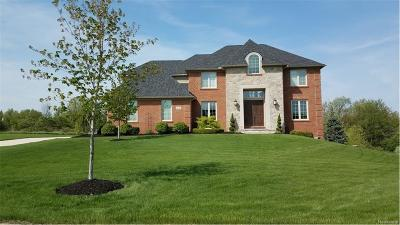 Northville Single Family Home For Sale: 9867 Meadow View Crt