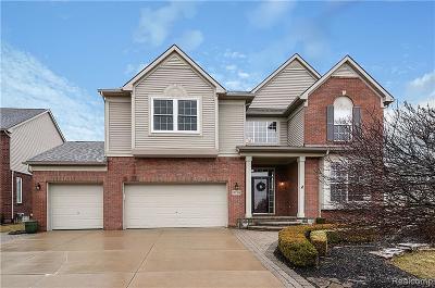 Northville Single Family Home For Sale: 49703 Parkside Dr
