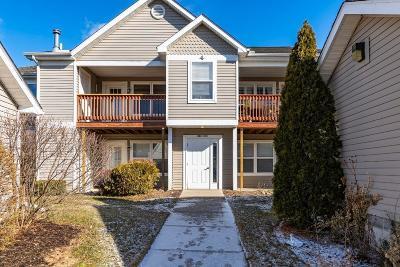 Ann Arbor Condo/Townhouse For Sale: 1398 Heatherwood Ln