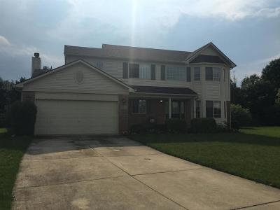 Ann Arbor Single Family Home For Sale: 2467 Cliffside Ct