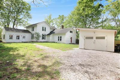 Ann Arbor Single Family Home For Sale: 1460 Pear Rd