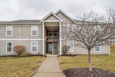 Ann Arbor Condo/Townhouse For Sale: 1269 Millbrook Trl