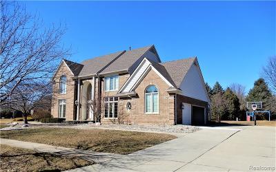 Canton Single Family Home For Sale: 48876 Amelia Crt