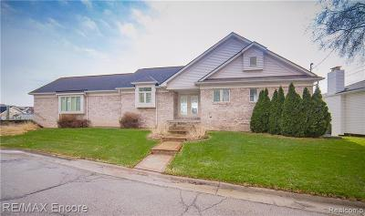 Lake Orion Single Family Home For Sale: 166 Highland Ave