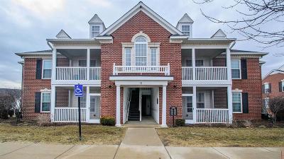 Ann Arbor Condo/Townhouse For Sale: 957 E Summerfield Glen Cir