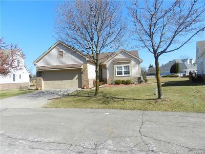 Novi Condo/Townhouse For Sale: 31239 Barrington Dr