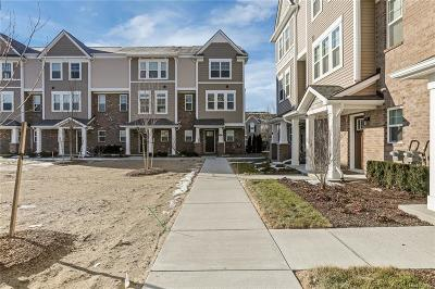 Wixom Condo/Townhouse For Sale: 423 Wright St