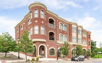 Northville Condo/Townhouse For Sale: 325 E Cady St