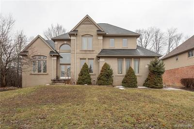 West Bloomfield Single Family Home For Sale: 7382 Colchester Ln
