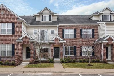 Ann Arbor Condo/Townhouse For Sale: 301 Scio Village Ct