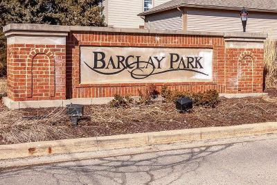 Ann Arbor Condo/Townhouse For Sale: 2817 Barclay Way