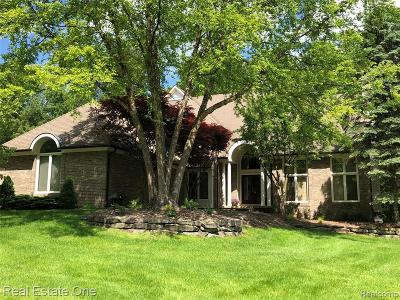 Lake Orion Single Family Home For Sale: 258 Indian Trl