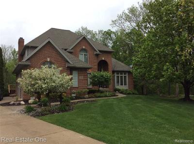 South Lyon Single Family Home For Sale: 22755 Indianwood Dr N