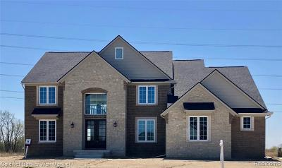 Northville Single Family Home For Sale: 51181 Chamberlin Crt