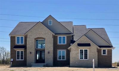 Novi Single Family Home For Sale: 51181 Chamberlin Crt