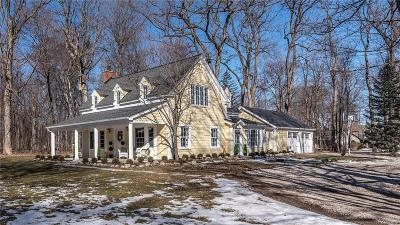Northville Single Family Home For Sale: 19777 Meadowbrook Rd
