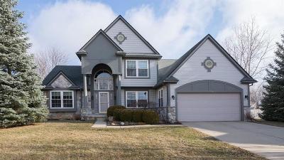 Ann Arbor Single Family Home For Sale: 3194 Birchwood Ct