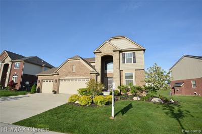 Novi Single Family Home For Sale: 27626 Amadora Cir