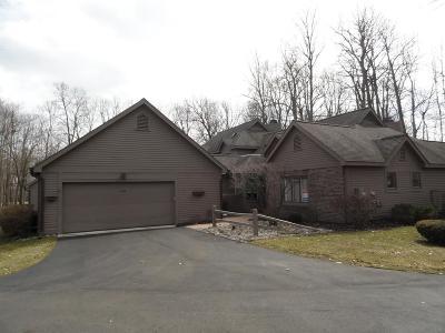 Ann Arbor Condo/Townhouse For Sale: 4530 Cottonwood Dr