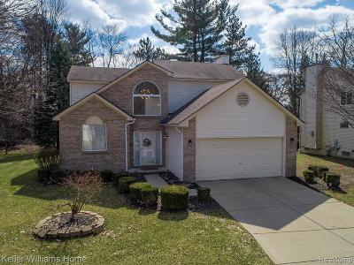 Southfield Single Family Home For Sale: 21775 Rose Hollow Dr