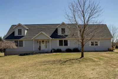 Britton MI Single Family Home For Sale: $299,875
