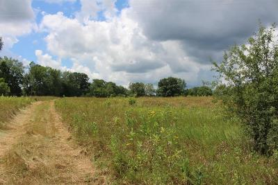 Jackson MI Residential Lots & Land For Sale: $799,900